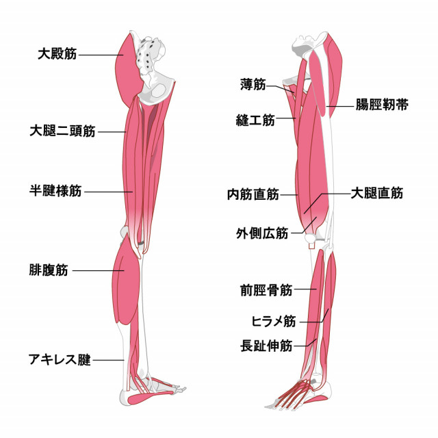 当院の産後の膝痛に対してのアプローチ